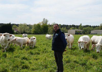 boeuf-fermier-indre-et-loire